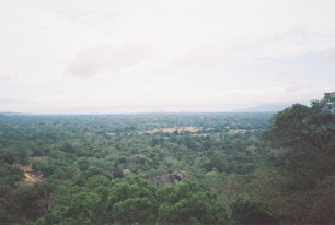View from Sigiriya Rock